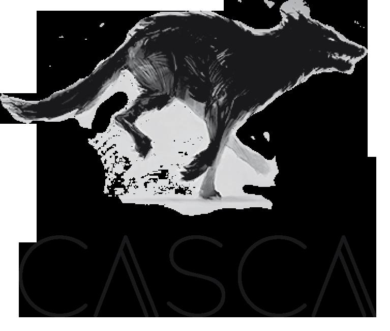 Logo Agence Casca